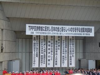 TPP座り込み (15).JPG